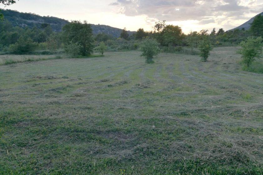 Program raspolaganja Poljoprivrednim zemljištem u vlasništvu Republike Hrvatske za područje Općine Konavle