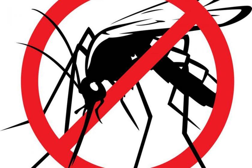 U četvrtak 2. srpnja tijekom noći i ranog jutra provest će se adulticidni tretman komaraca